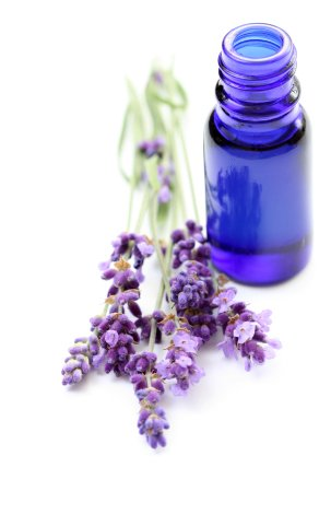 The Lavender Room - Aromatherapy Massage
